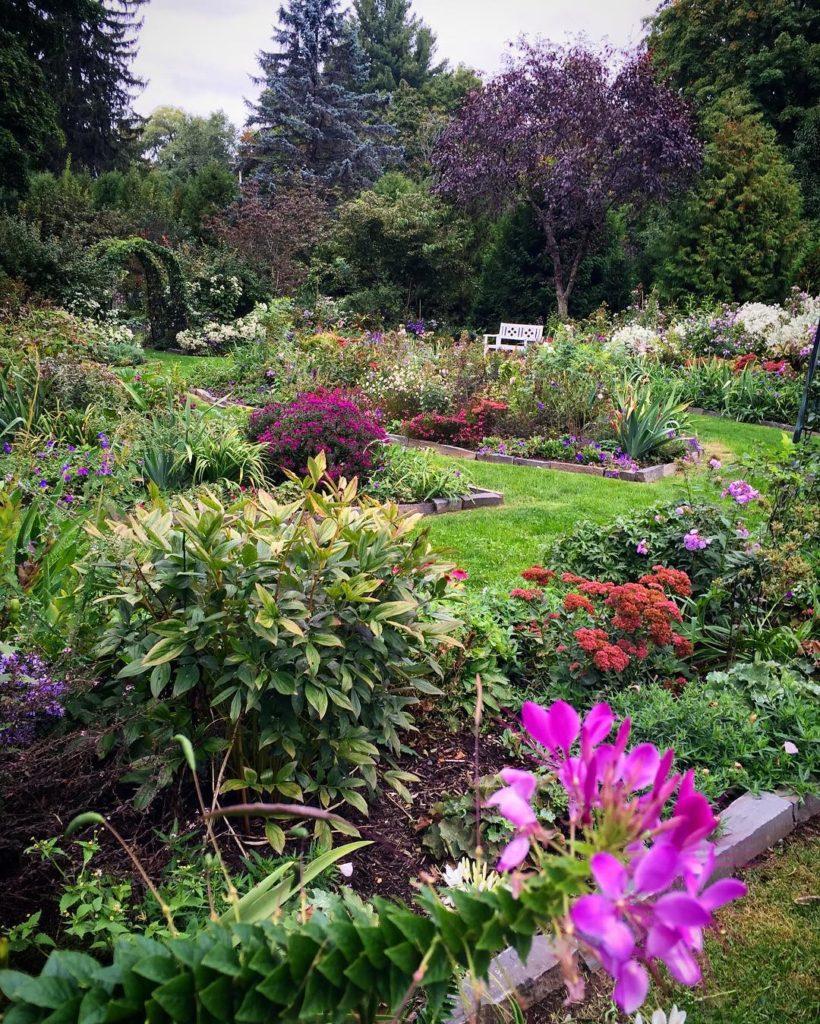 The Perennial Garden having its final hurrah before going tohellip