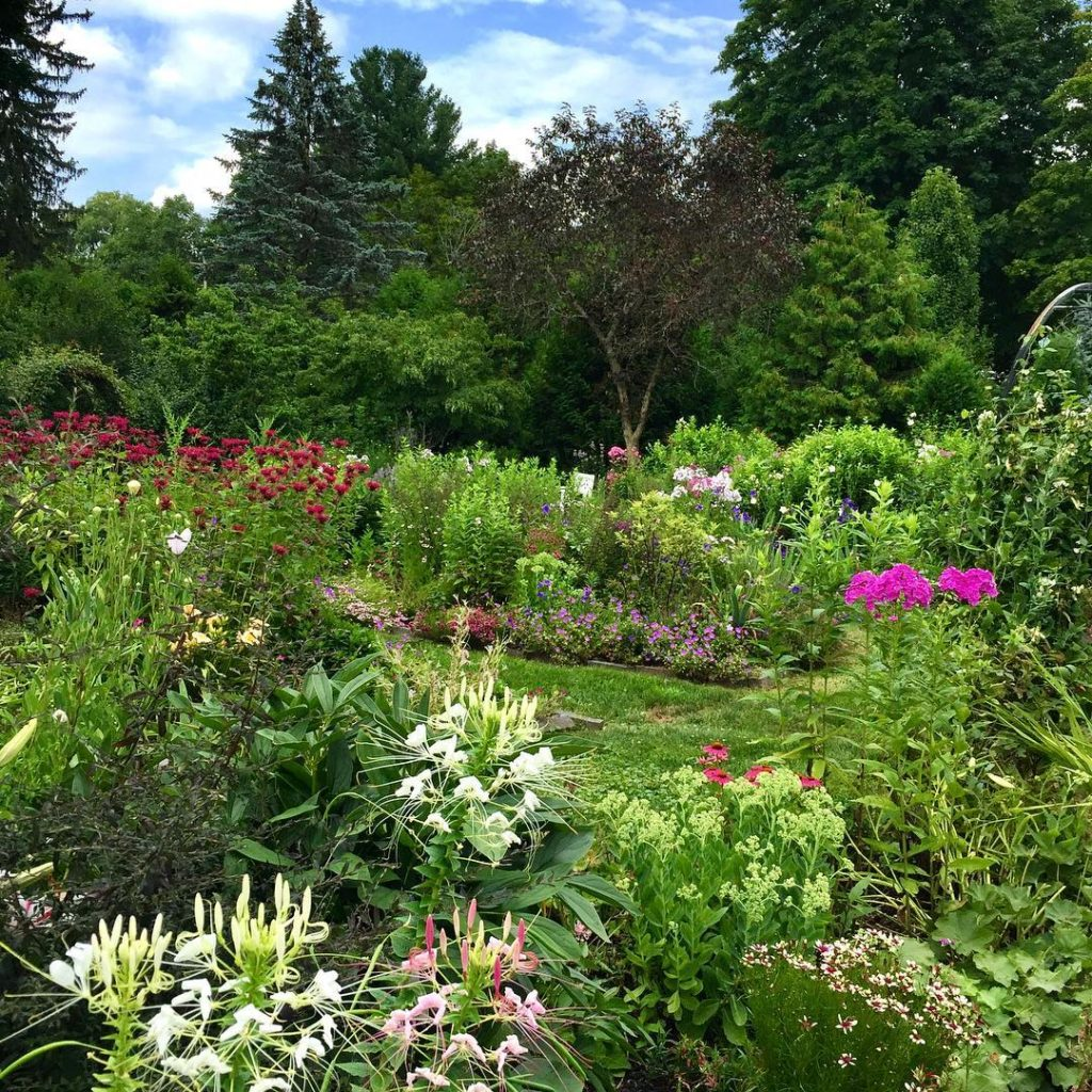 By now theres no controlling the Perennial Garden gardendesign gardengramhellip